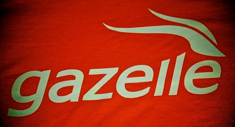 Gazelle T-Shirt (Close Up)